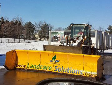 Full Service Commercial Lawn Care And Landscape